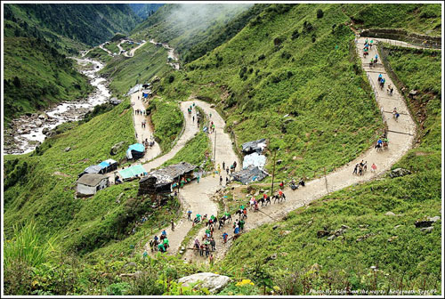 Horses on the route to Kedarnath carrying pilgrims, before the floods.