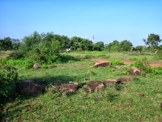 Bhushavali Travelogue Thiruporur Megalithic (4)