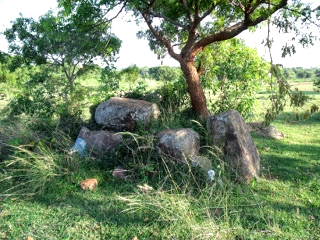 Bhushavali Travelogue Thiruporur Megalithic (9)