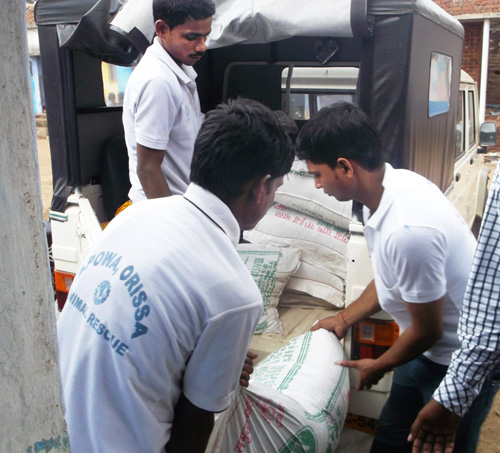 Our volunteers are loading lifesaving feed and medicines. APOWA's team has been busy caring for animals since the cyclone and floods devastated coastal Odisha.
