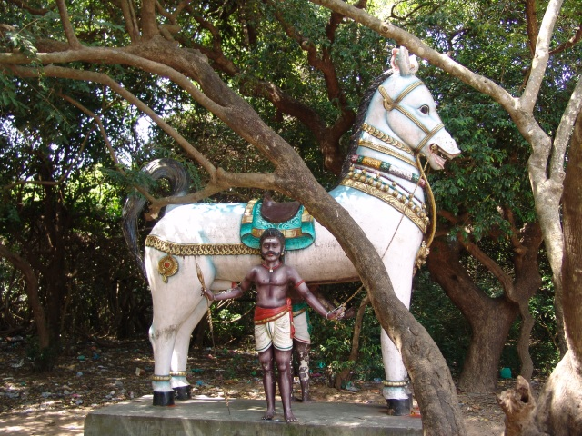 horseDSC02154 2 Puthupet