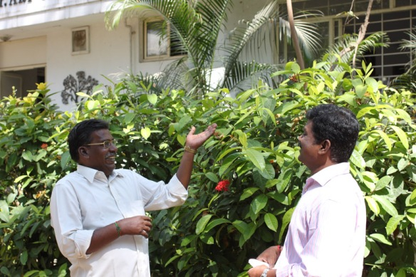 Sacred Trees of Tamil Nadu | Echoes in the Mist