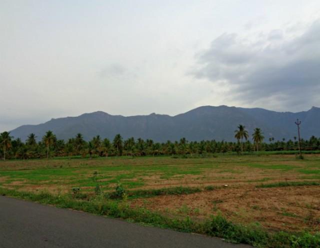 Karpura natheswarar koil (10)